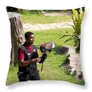 Cartoon - A Trainer And A Large Bird Of Prey At A Show Inside The Jurong Bird Park Throw Pillow