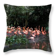 Cartoon - Flamingos In Their Exhibit Along With A Small Lake In The Jurong Bird Park Throw Pillow