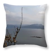 Cartoon - Plants In Front Of The Waters Of A Lake In The Scottish Highlands Throw Pillow