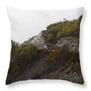 Cartoon - Wire Mesh Holding Up A Crumbling Hillside In The Scottish Highlands Throw Pillow