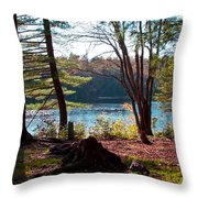 Cary Lake In The Fall Throw Pillow