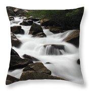 Cascade Falls Throw Pillow