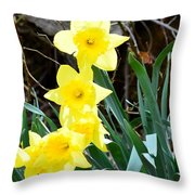 Cascade Of Daffodils Throw Pillow