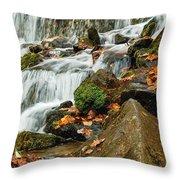 Cascade Throw Pillow