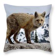 Cascade Red Fox 1 Throw Pillow