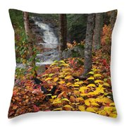 Cascade Creek  Autumn Throw Pillow