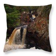 Cascade River Throw Pillow