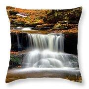 Cascades At Ricketts Glen Throw Pillow