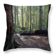 Cascades Forest Path Throw Pillow