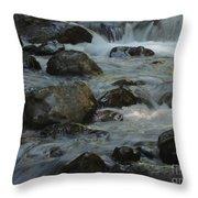 Cascades Throw Pillow by Heike Ward