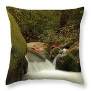 Cascades In Appalachian Mountains Throw Pillow