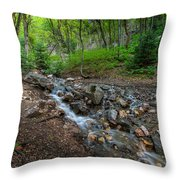 Cascades Of The Forest Throw Pillow