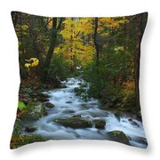Cascades On The Motor Nature Trail Throw Pillow