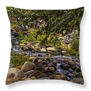 Cascading Creek Throw Pillow