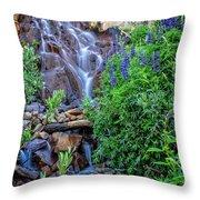 Cascading Falls Throw Pillow