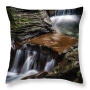 Cascading Glen Throw Pillow