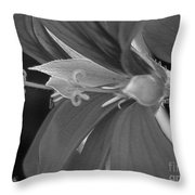Cascading Ivy Geranium Named Decora Fire Throw Pillow