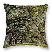 Cascading Oaks Throw Pillow