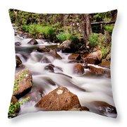 Cascading Rocky Mountain Forest Creek Throw Pillow