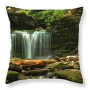 Cascading Through Glen Leigh Throw Pillow