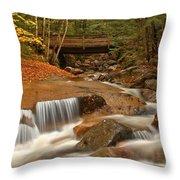 Cascades Below Flume Gorge Throw Pillow