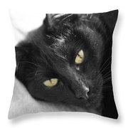 Caspian Throw Pillow