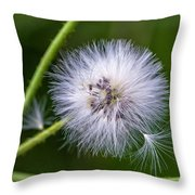 Cast Your Fate To The Wind Throw Pillow