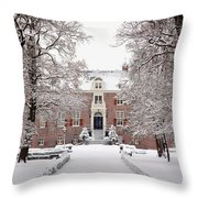 Castle In Winter Dress  Throw Pillow