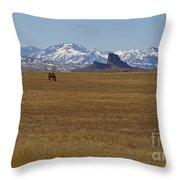 Castle Rock Horses   #8515 Throw Pillow