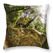 Castle Rock State Park Bolder Throw Pillow