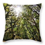 Castle Rock State Park Sun Rise Throw Pillow