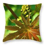 Castor Bean Leaf And Pod Throw Pillow