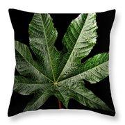 Castor Bean Leaf Throw Pillow