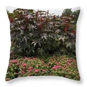 Castor Oil Plant Ricinus Communis Throw Pillow
