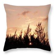 Casurina Sunset Throw Pillow