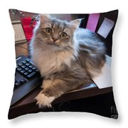 Cat And Keyboard Throw Pillow