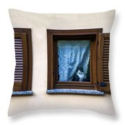 Cat At The Window Throw Pillow