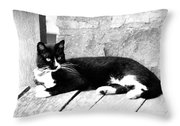 Cat Black And White Throw Pillow