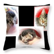 Cat Family Throw Pillow