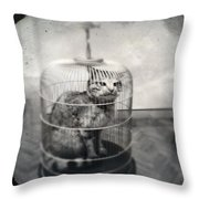Cat In Cage Throw Pillow