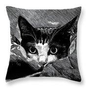 Cat In Hiding Throw Pillow
