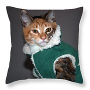 Cat In Patrick's Coat Throw Pillow