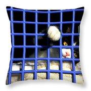 Cat In Pet Carrier Throw Pillow
