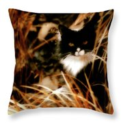 Cat In The Golden Grass Throw Pillow