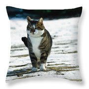 Cat In The Snow Throw Pillow