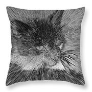 Cat - India Ink Effect Throw Pillow