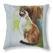 White And Brown Cat Throw Pillow