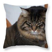 Cat Nap Time Throw Pillow