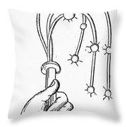 Cat-o'-nine-tails, 1552 Throw Pillow