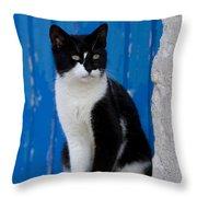 Cat On A Greek Island Throw Pillow